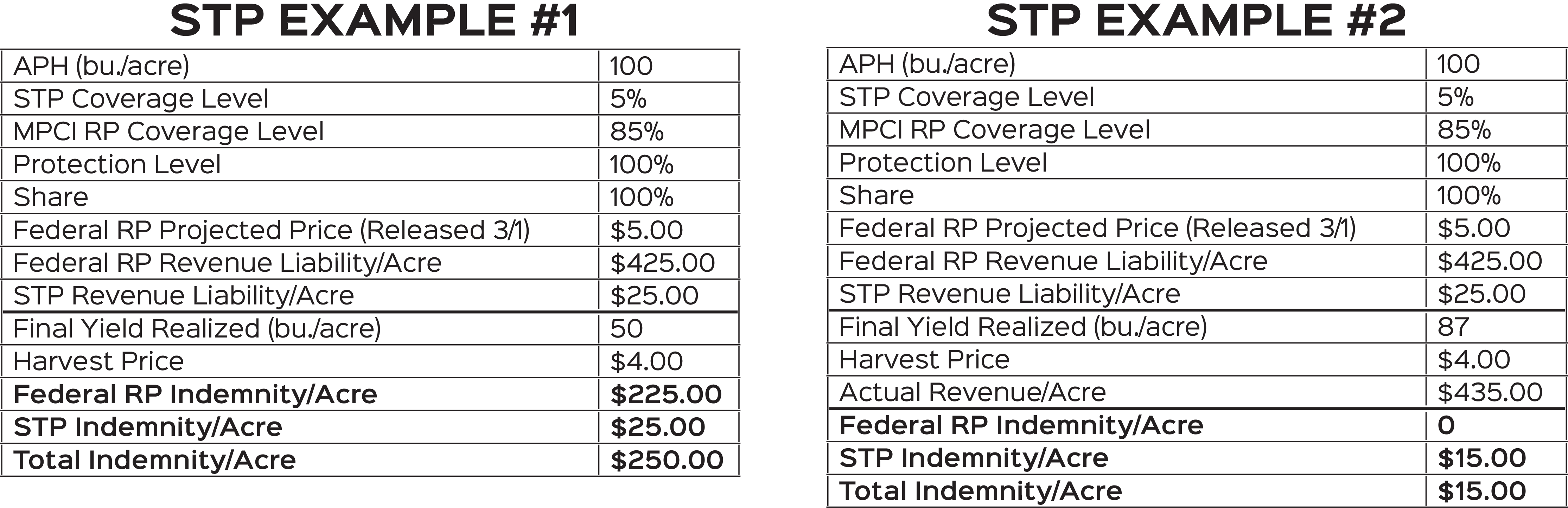 STP Examples