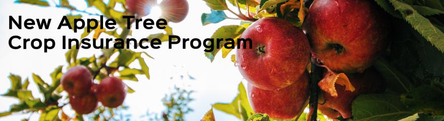 Apple Tree Insurance – New Crop Insurance Program
