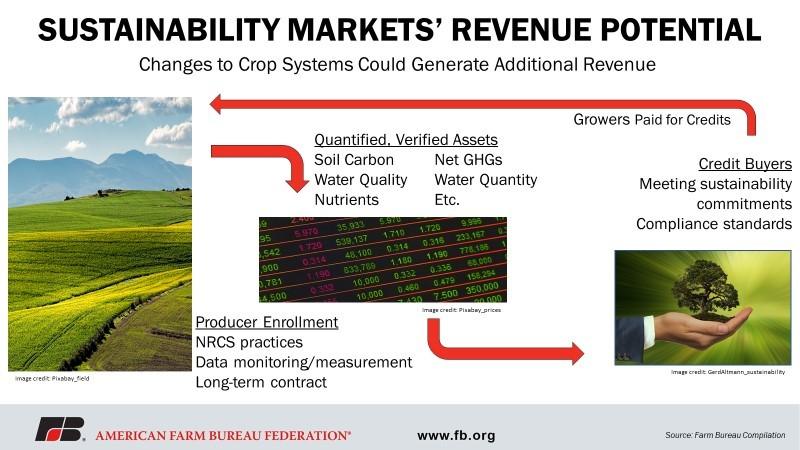 figure 2 - sustainability markets' revenue potential