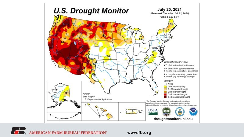 7-20 - Drought Map