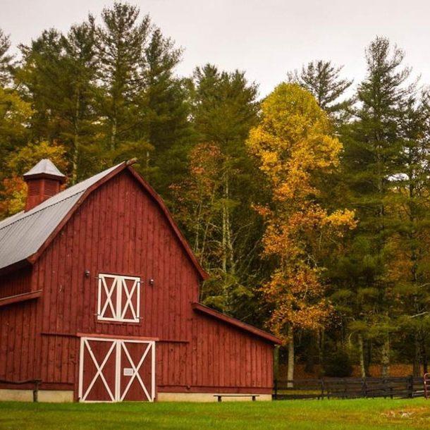 Whole Farm Rev Protection